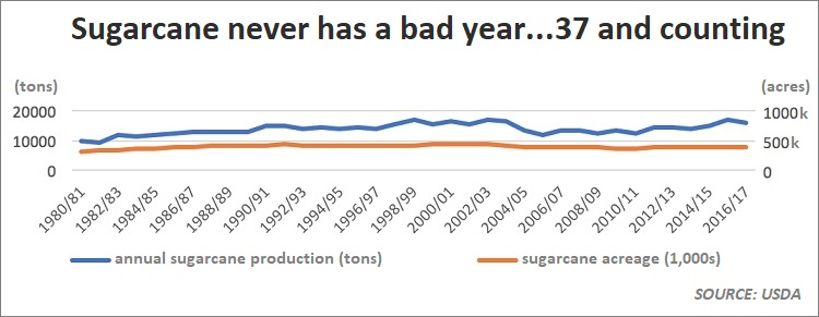 USDA: Florida Sugarcane Has Never Had an Off-Year
