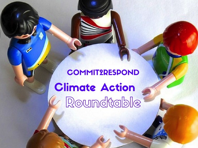 climate action roundtable