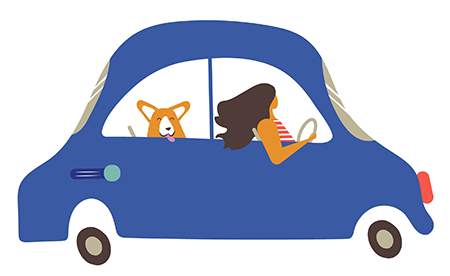 car-w-dog-crop.png