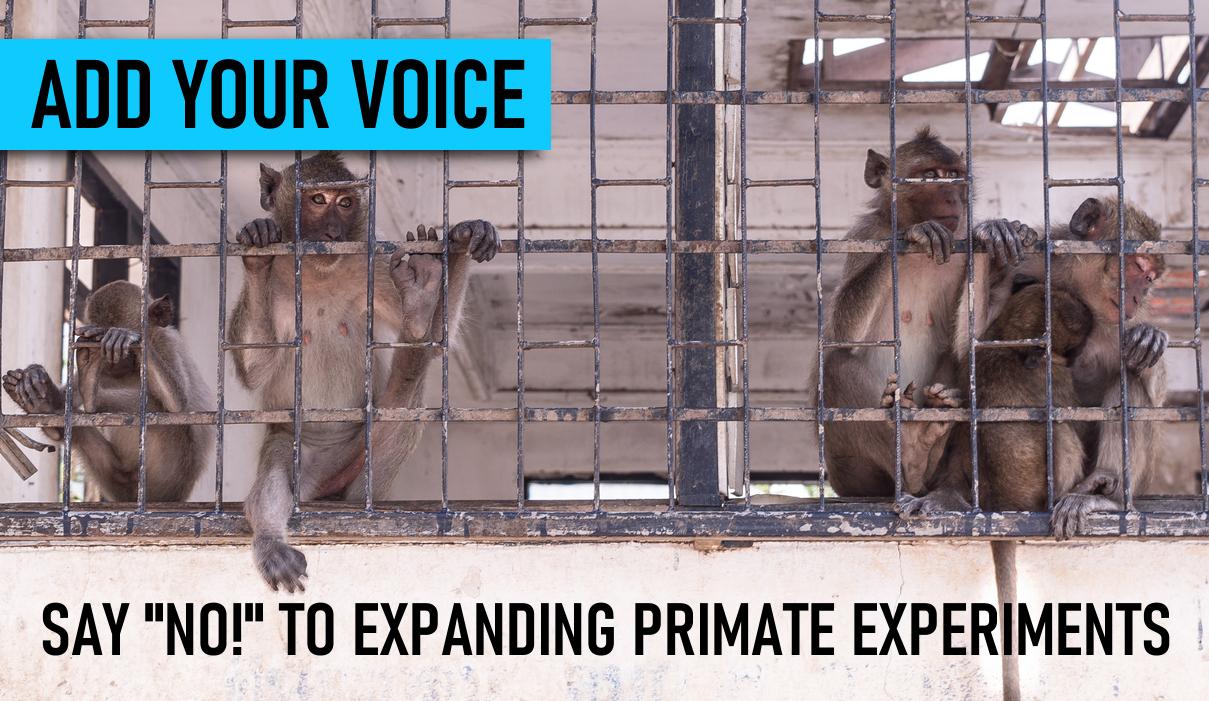alert_primate_funding_2.png