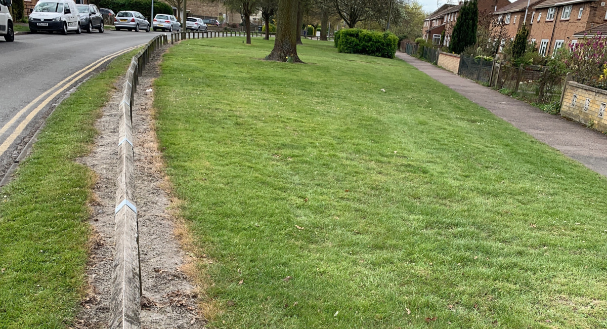 Lib Dems Call for Pesticide-Free Cambridge