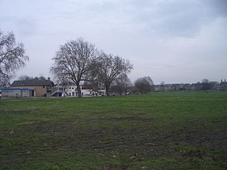 key_330px-Midsummercommon.jpg