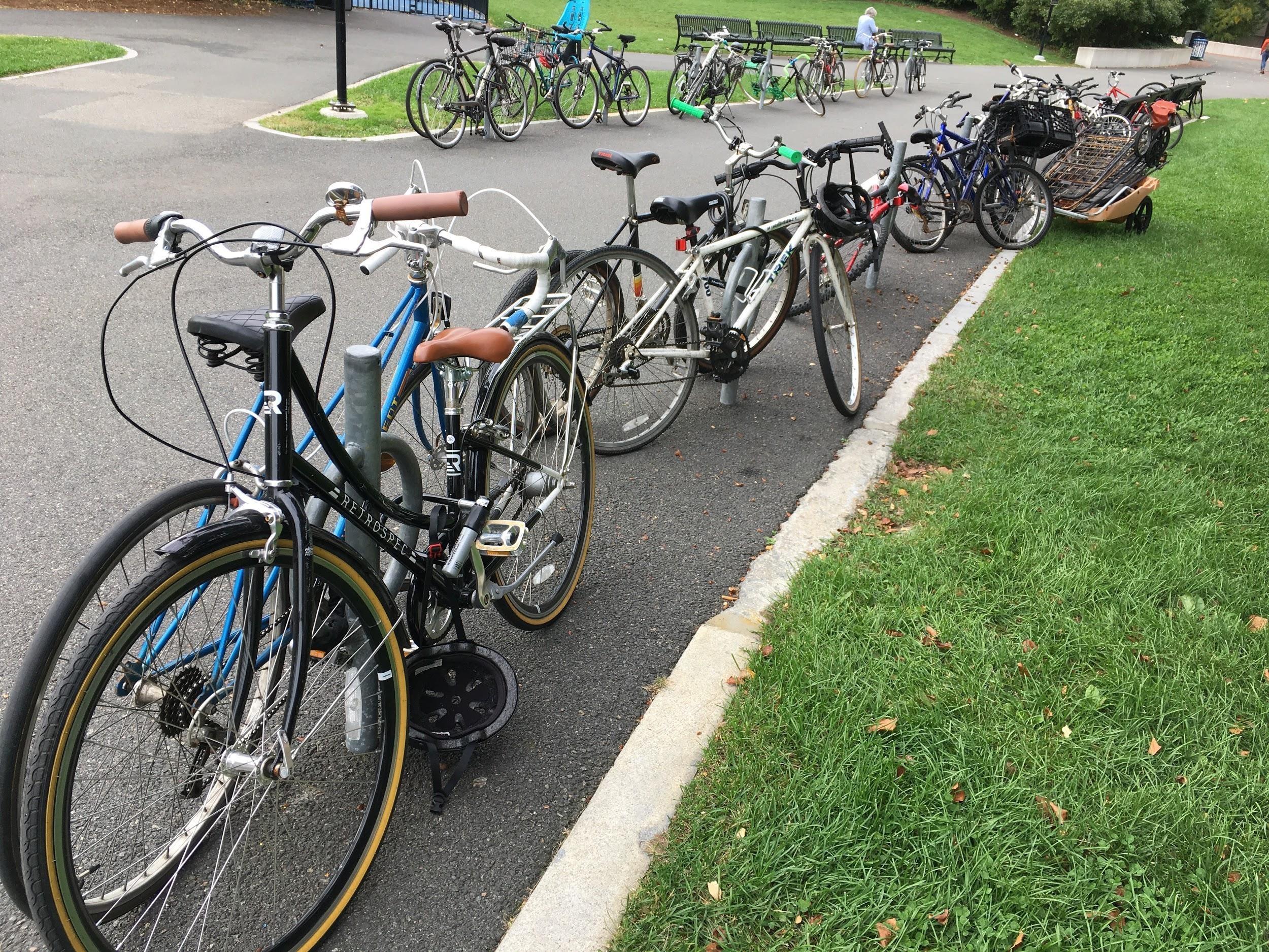 bikeshelter2.jpg