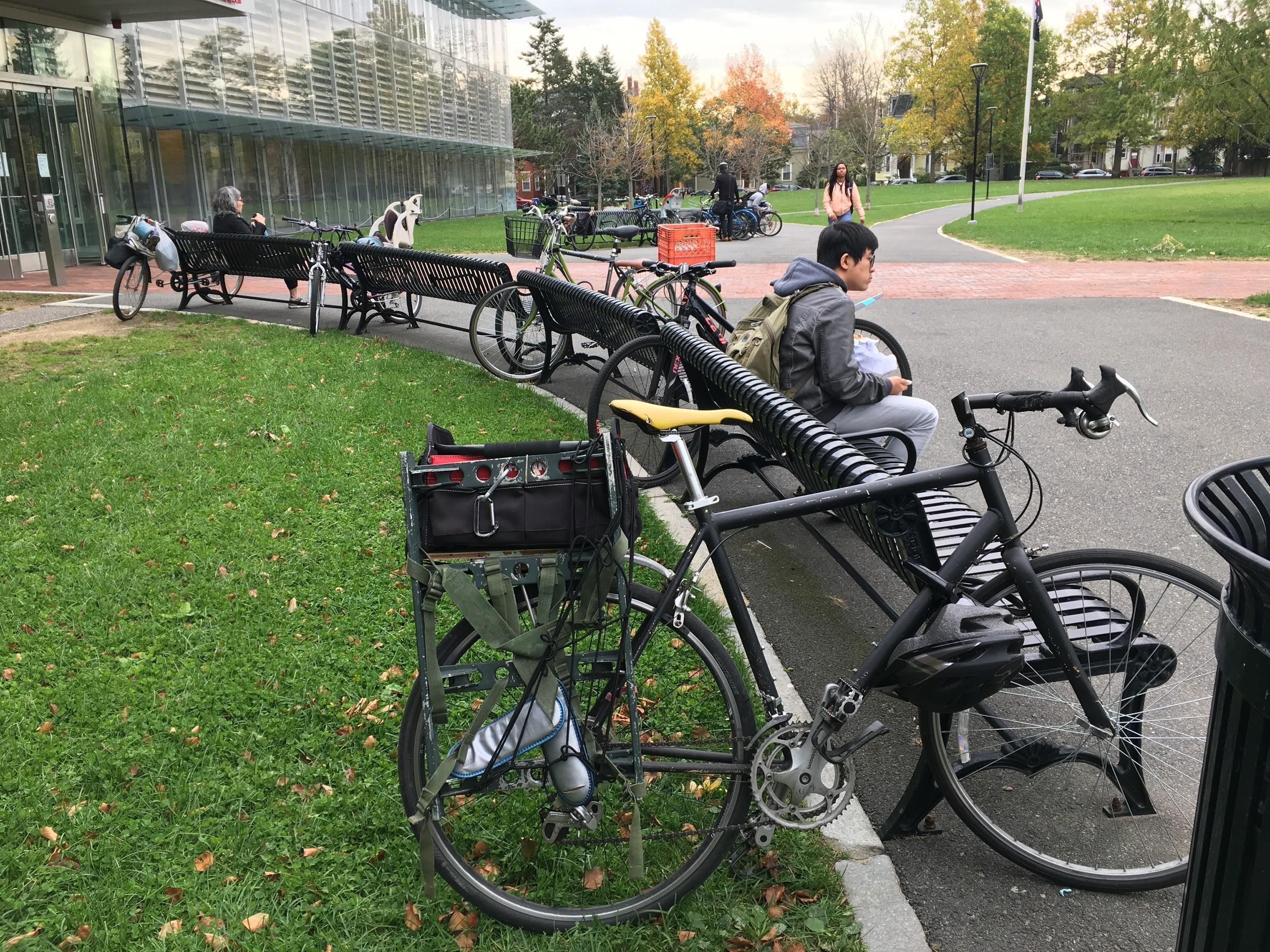 bikeshelter3.jpg