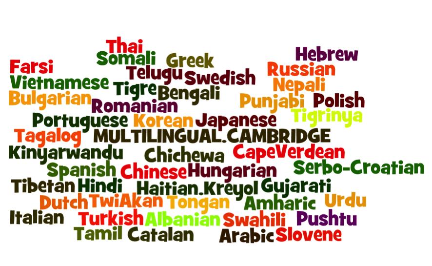 bilingual.png