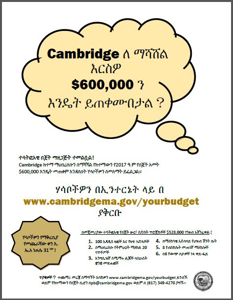 Idea_collection_flyer_Amharic.JPG