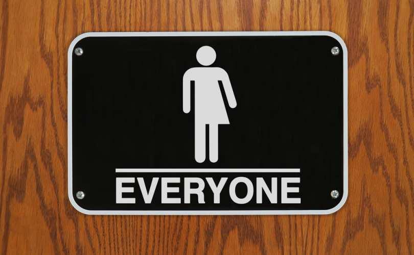 Everyone_gender_equality.jpg