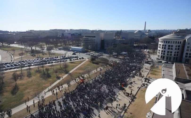 Marche_pour_la_Vie_Washington_2018.jpg