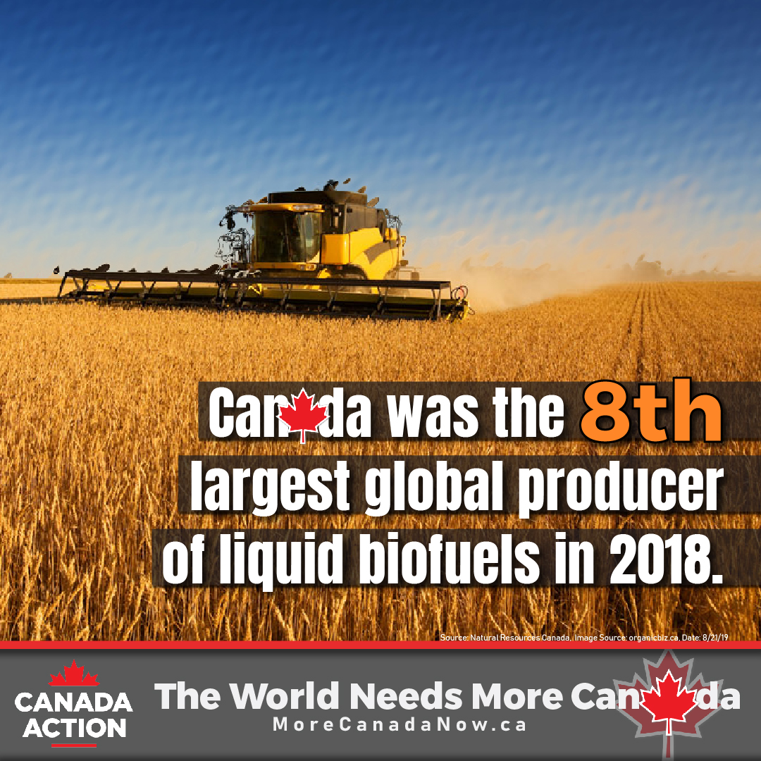 Canada is the 8th largest producer of biofuel liquids in the world