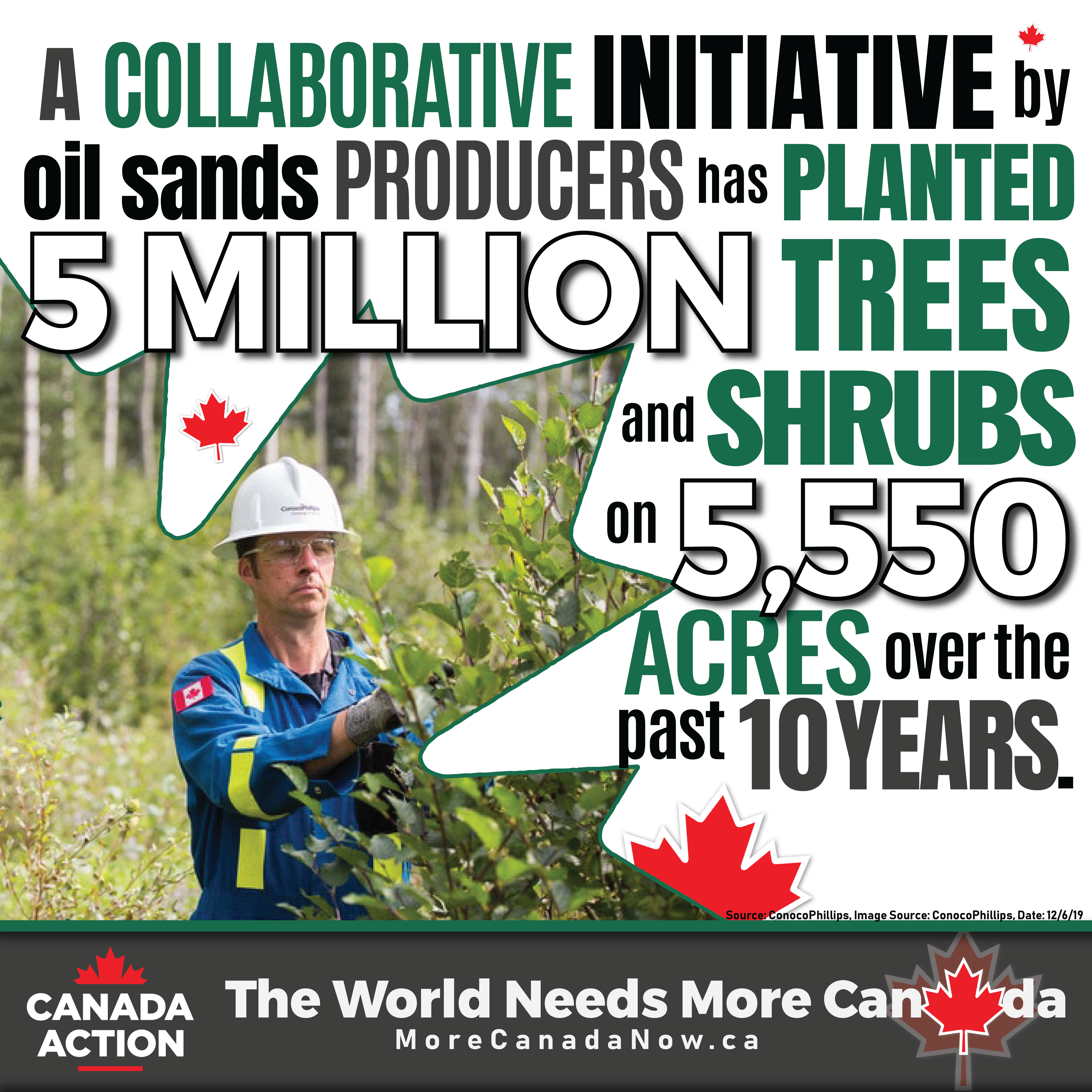 Oil Sands Reclamation - Producers Plant 5 Million Trees and Shrubs