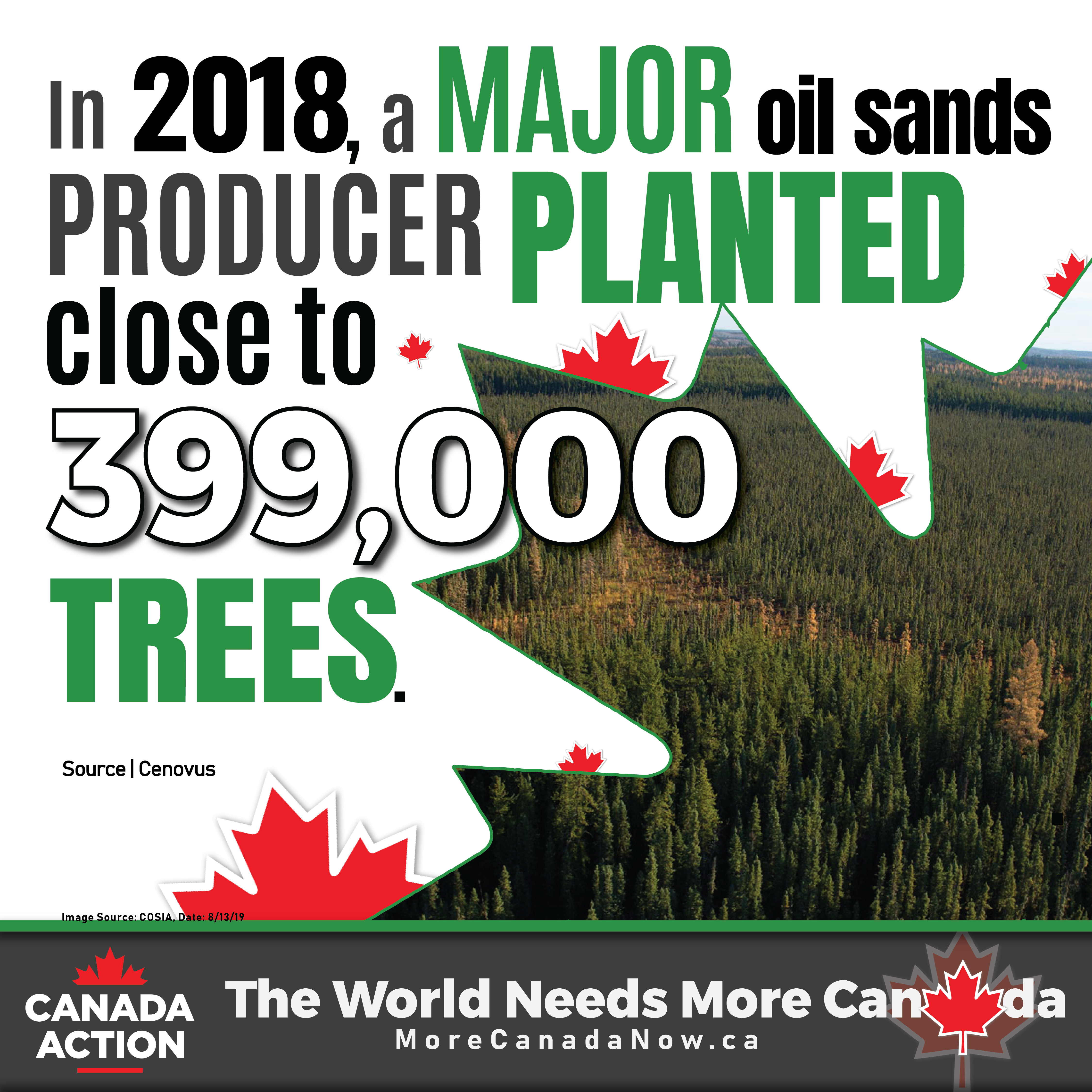 In 2018, a major oilsands producer planted nearly 400,000 trees
