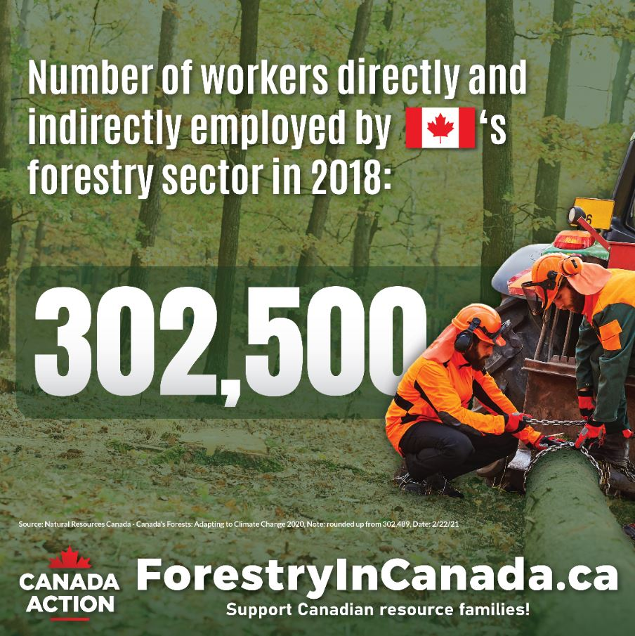 forestry sector facts canada employment 2019