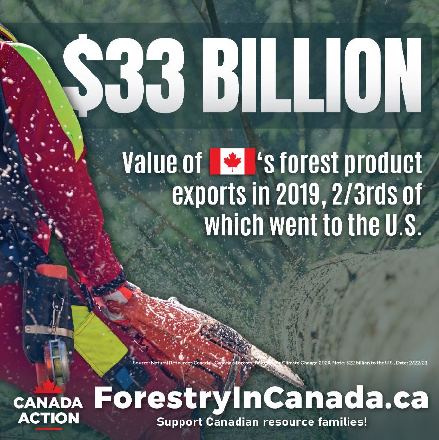 forestry sector facts canada export value 2018