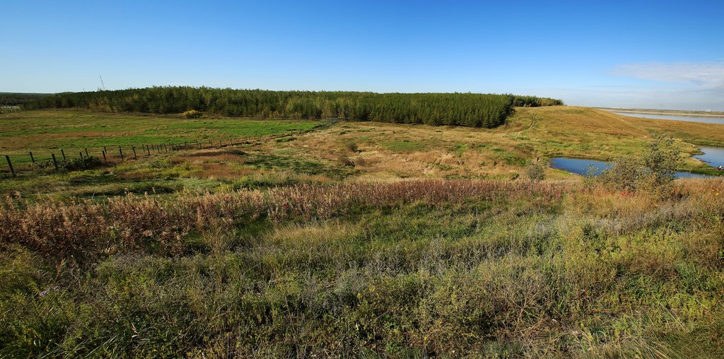 reclaimed oilsands land syncrude
