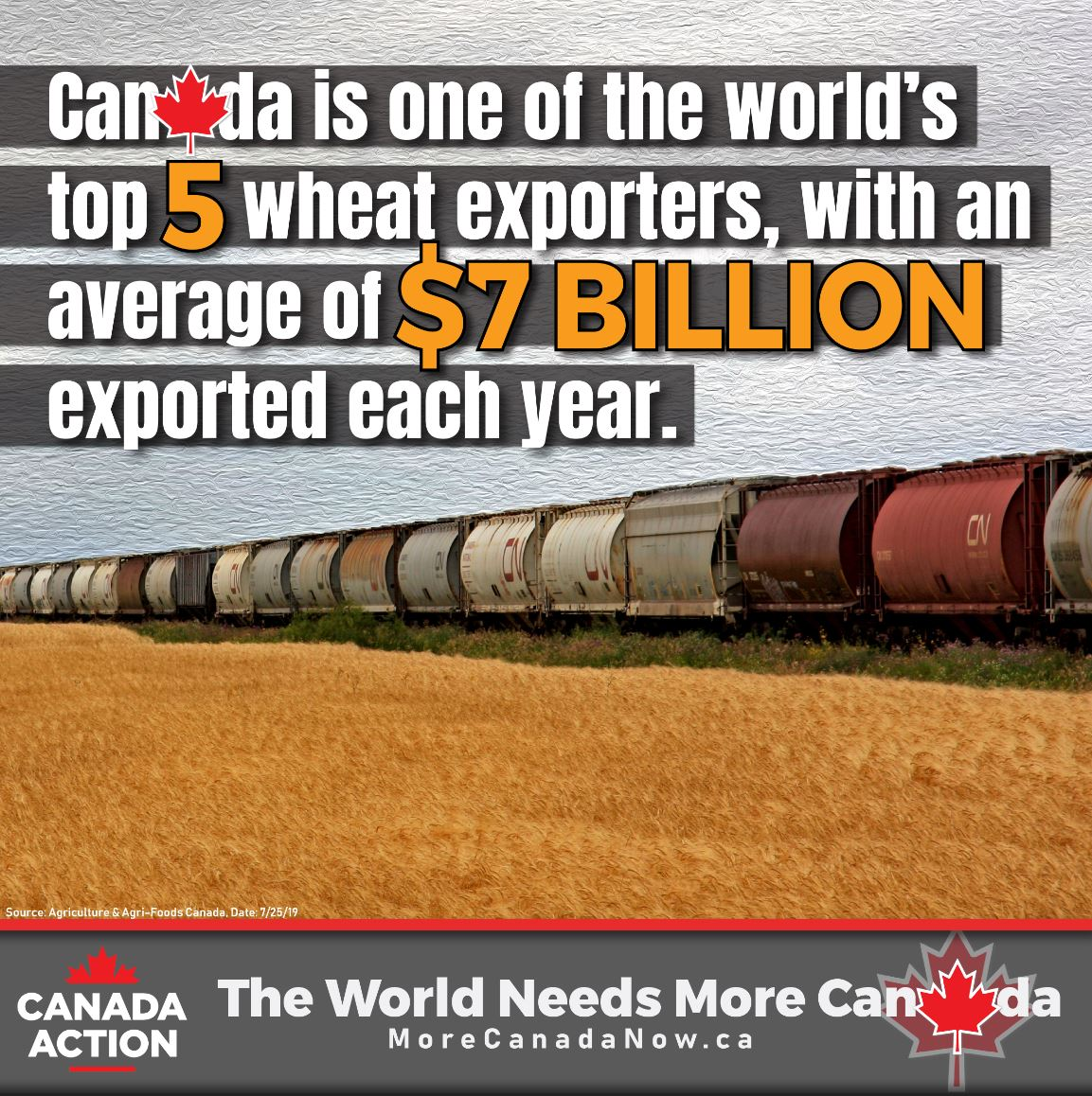 canada wheat exports top 5 global exporter