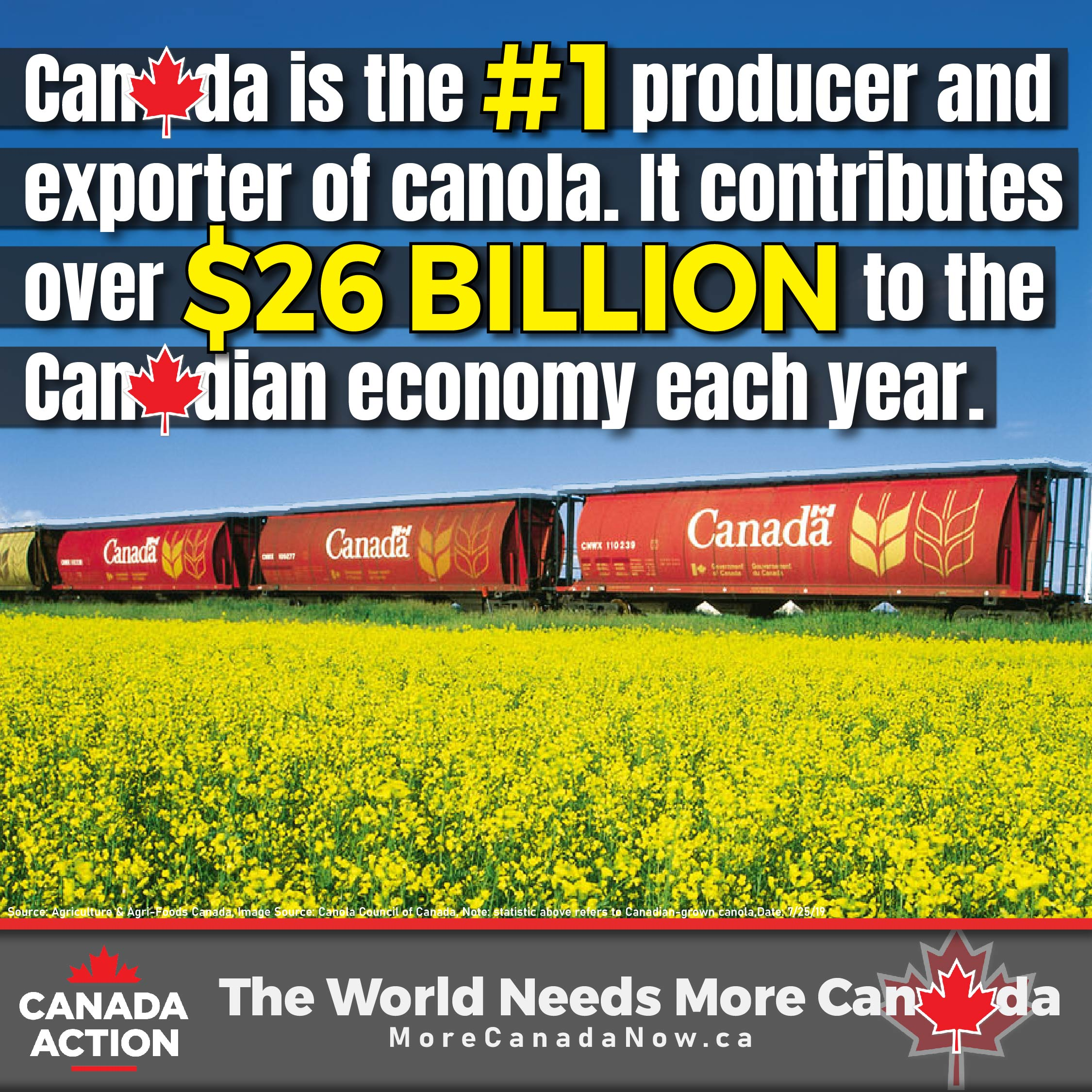 canada canola farming - #1 global exporter and producer of canola