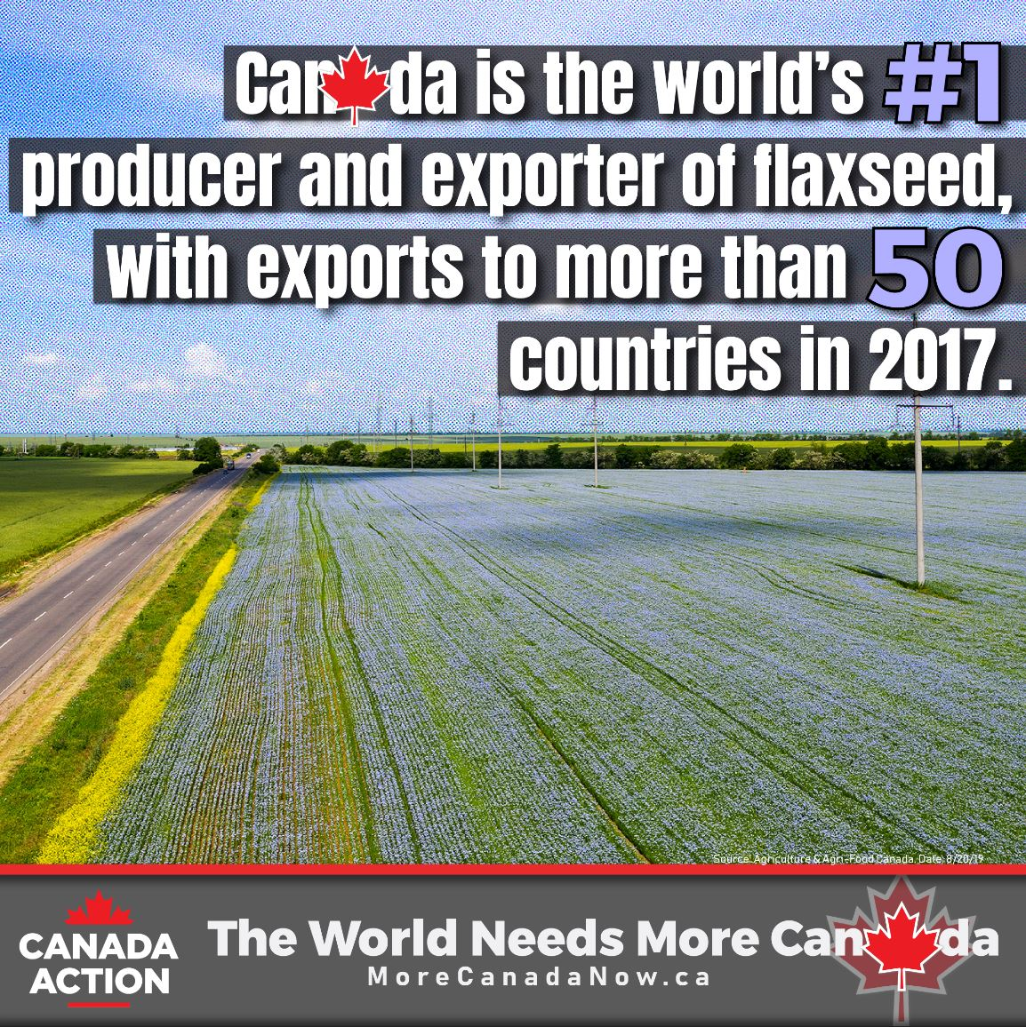 flaxseed in canada - world's #1 producer and exporter of flaxseed
