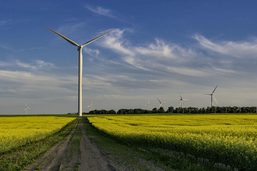 Renewable Energy Industry in Canada