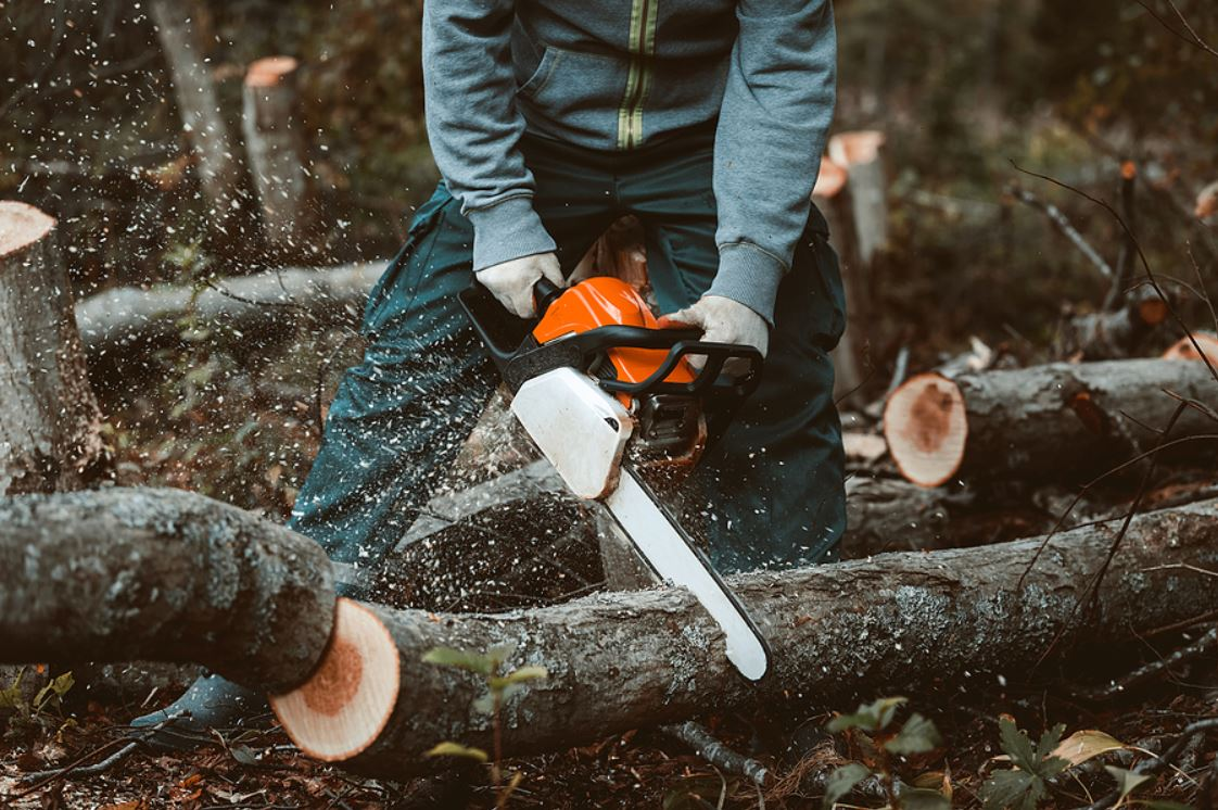 forestry worker in british columbia