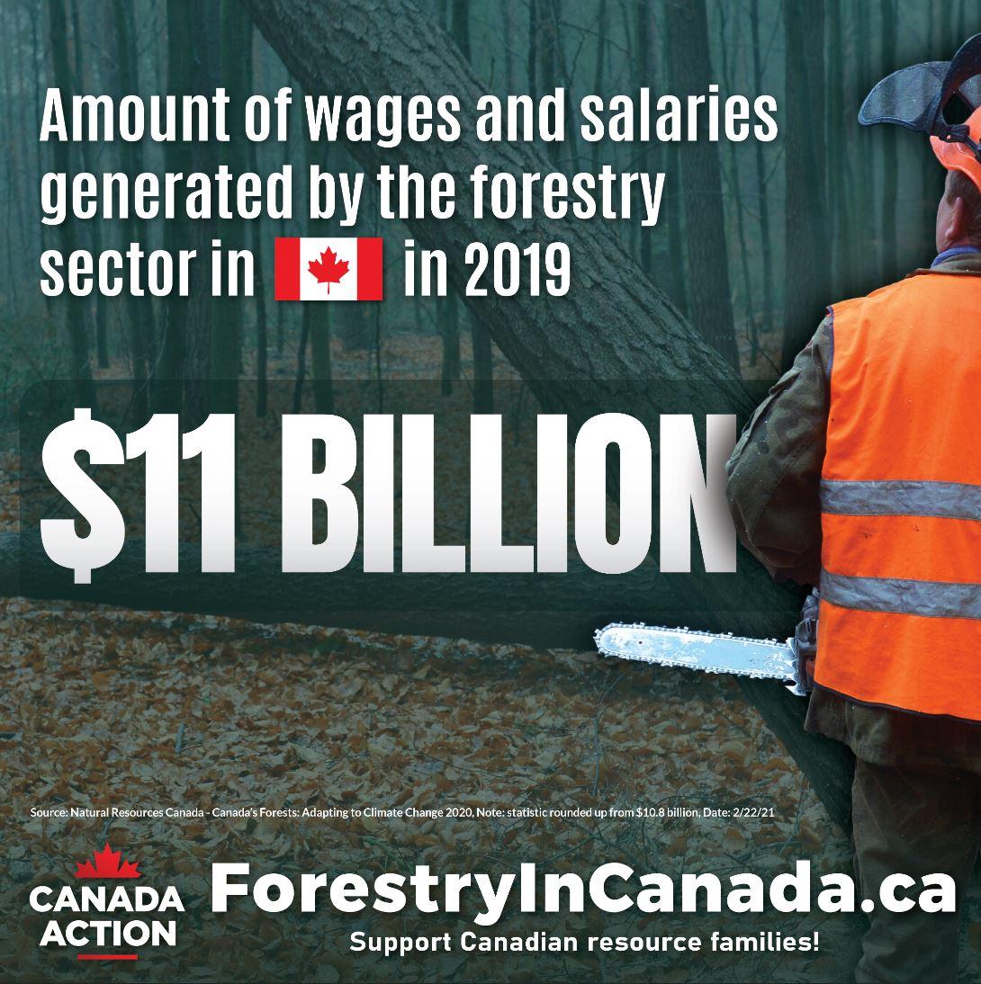 forest industry facts canada economic contribution to canadian families