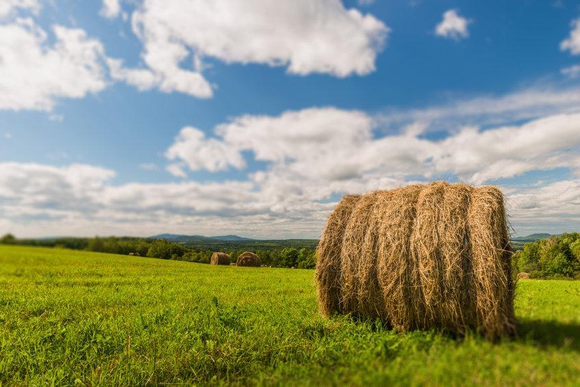 Hay West Initiative New Brunswick Hay Barrel Canada