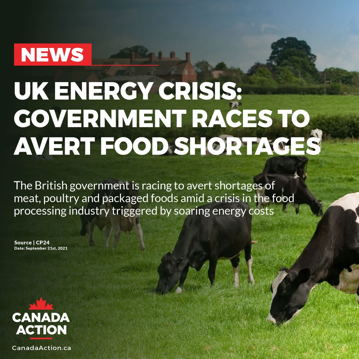 global energy shortage in 2021 UK government races to prevent food shortages
