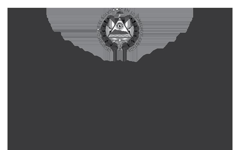Alianza #Nuevo País logo