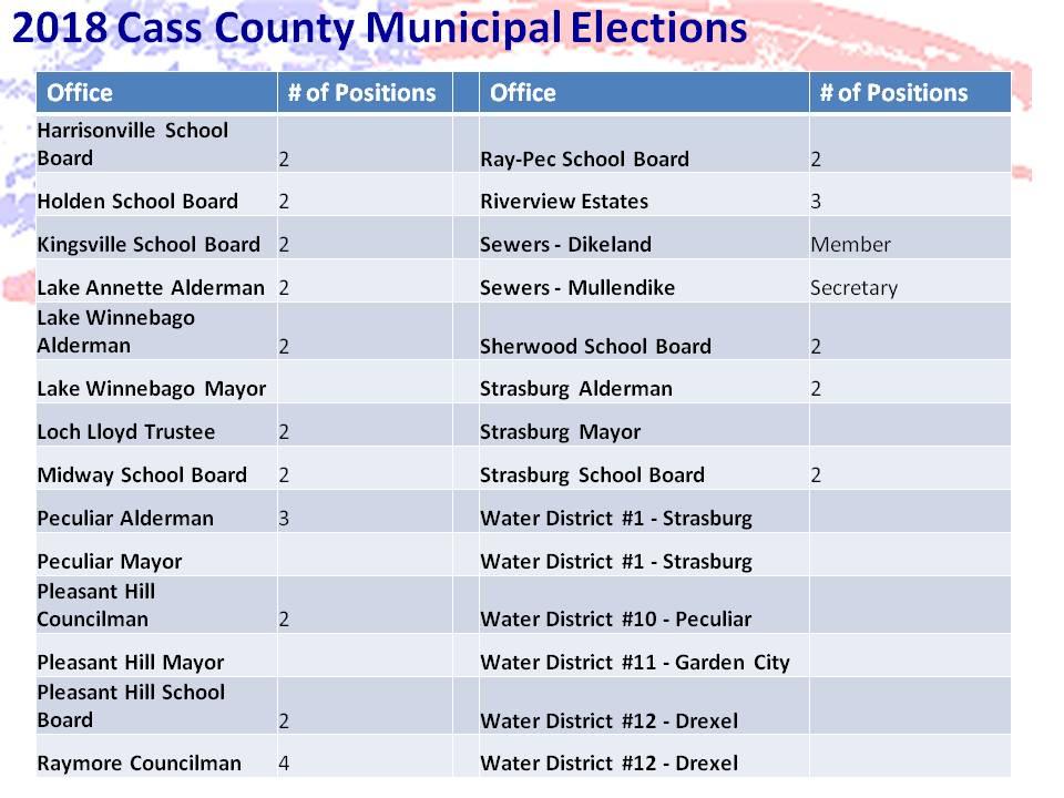 Municipal_Elections_2.jpg