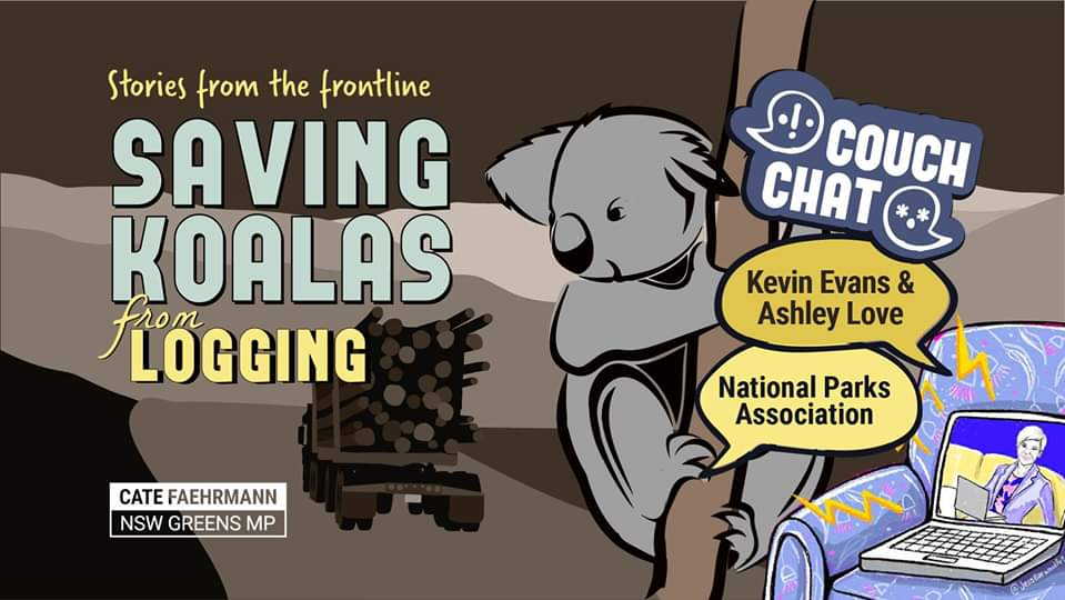 Saving koalas from logging with Kevin Evans and Ashley Love