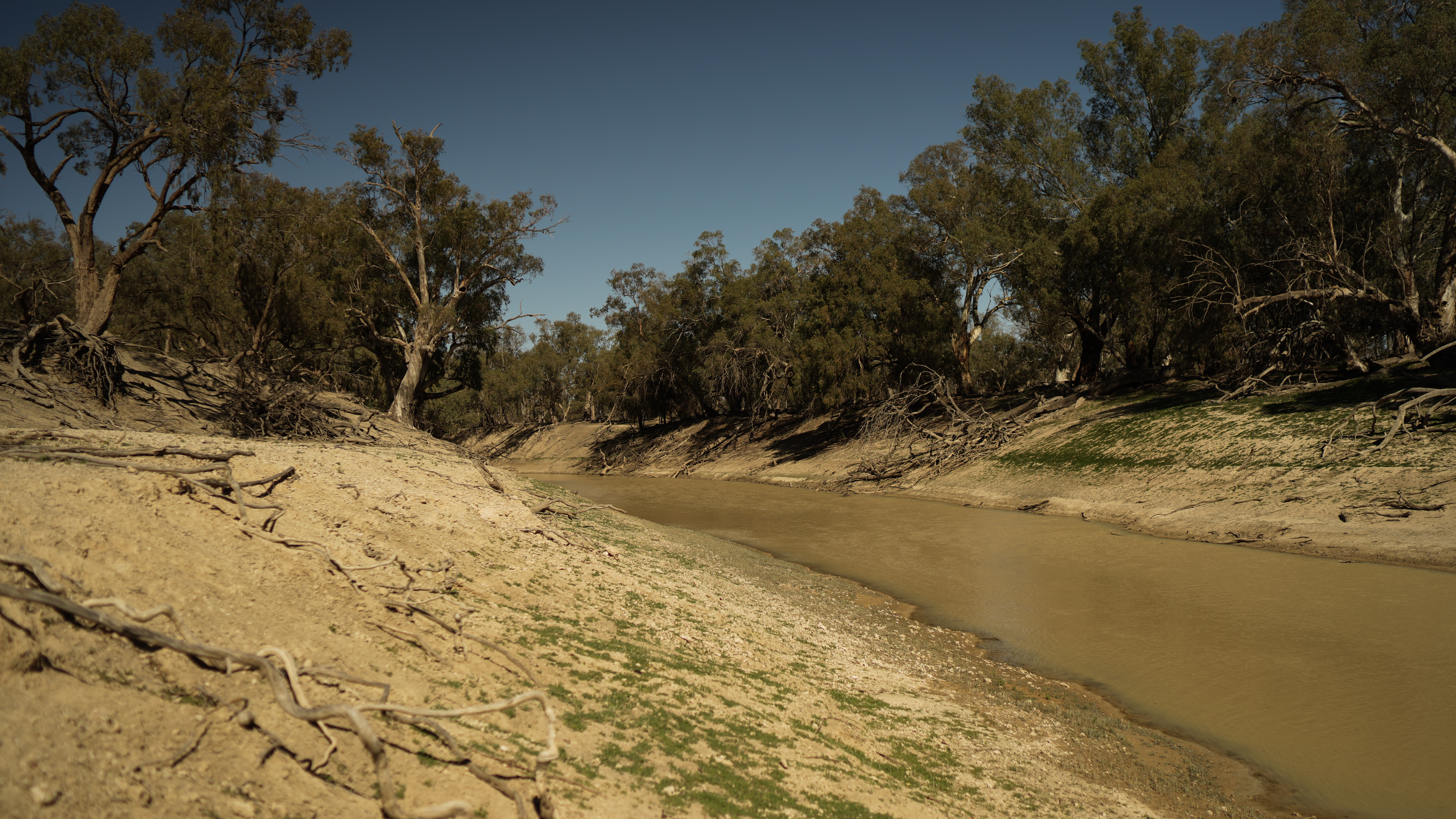 The Darling-Baaka. A once mighty river being deliberately sacrificed by governments captured by vested interests.
