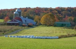 Catskill Farm New York Farm