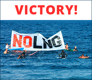 email_sidebar_lng_victory_300_v2.png