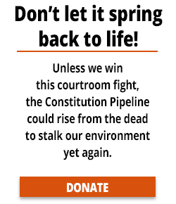 email_sidebar_constitution_rise_from_dead.png