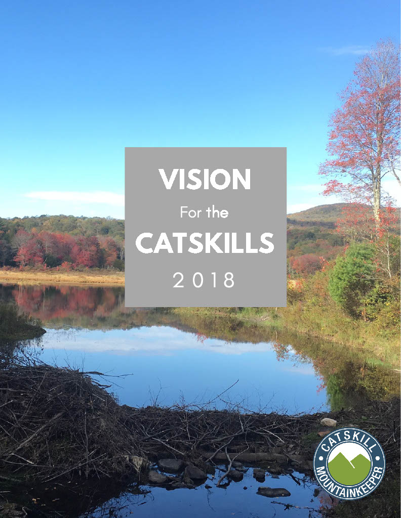 Vision_for_the_catskills_2018_cover.jpg
