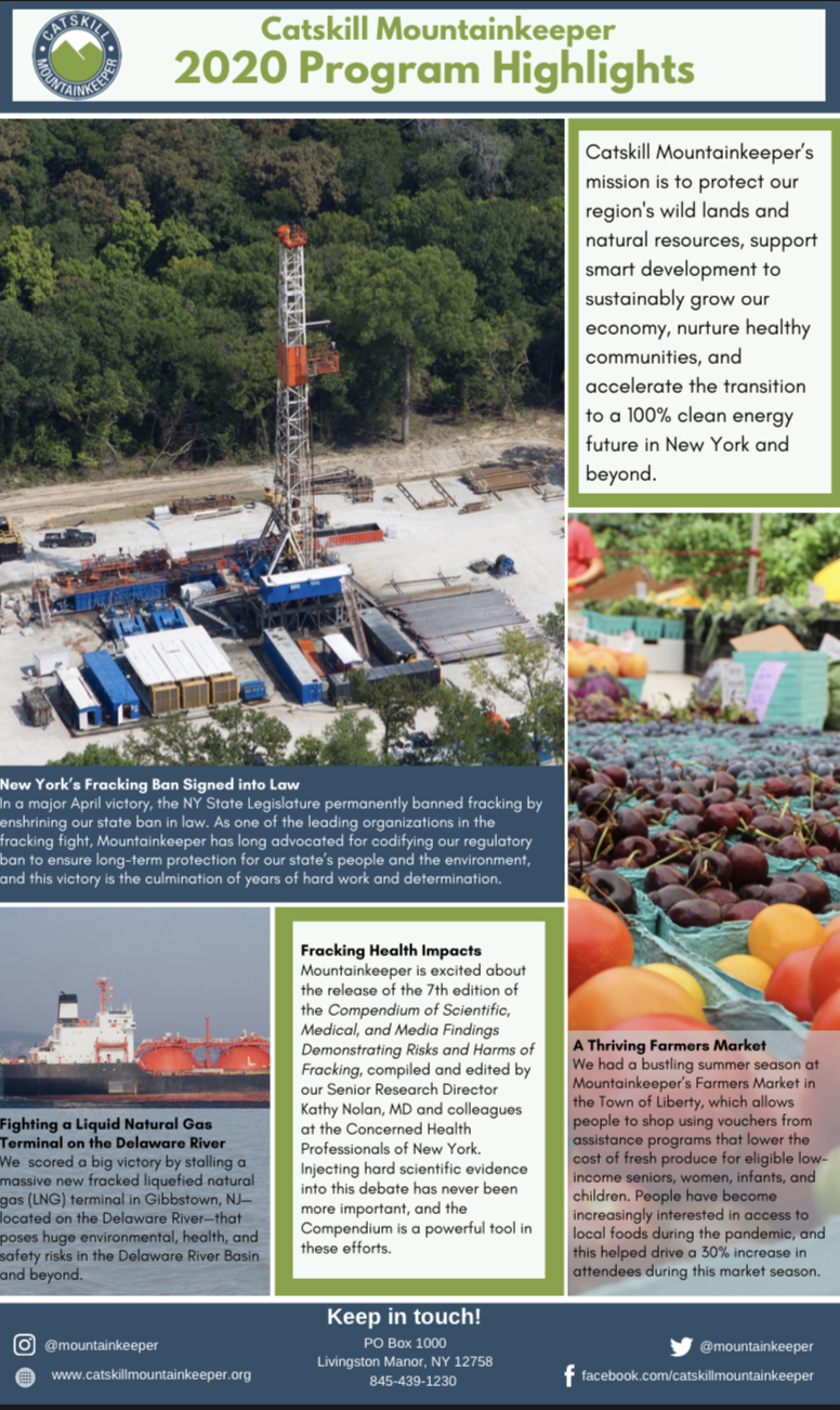2020 Program Report