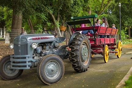 Dublin_tractor_ride.jpg