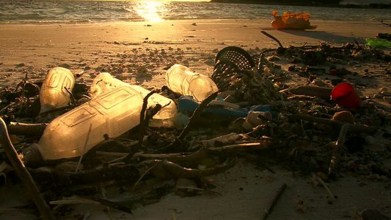 Plastic Waste on our Beaches