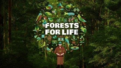 forestsforlife.jpg