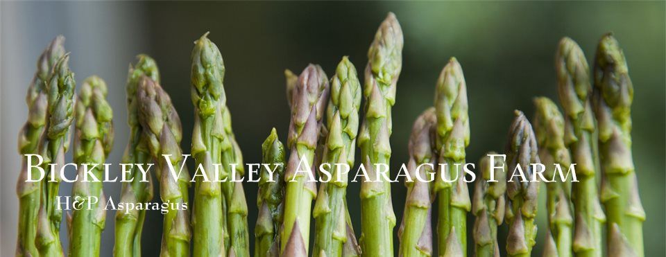 logo for Bickley Valley Asparagus Farm