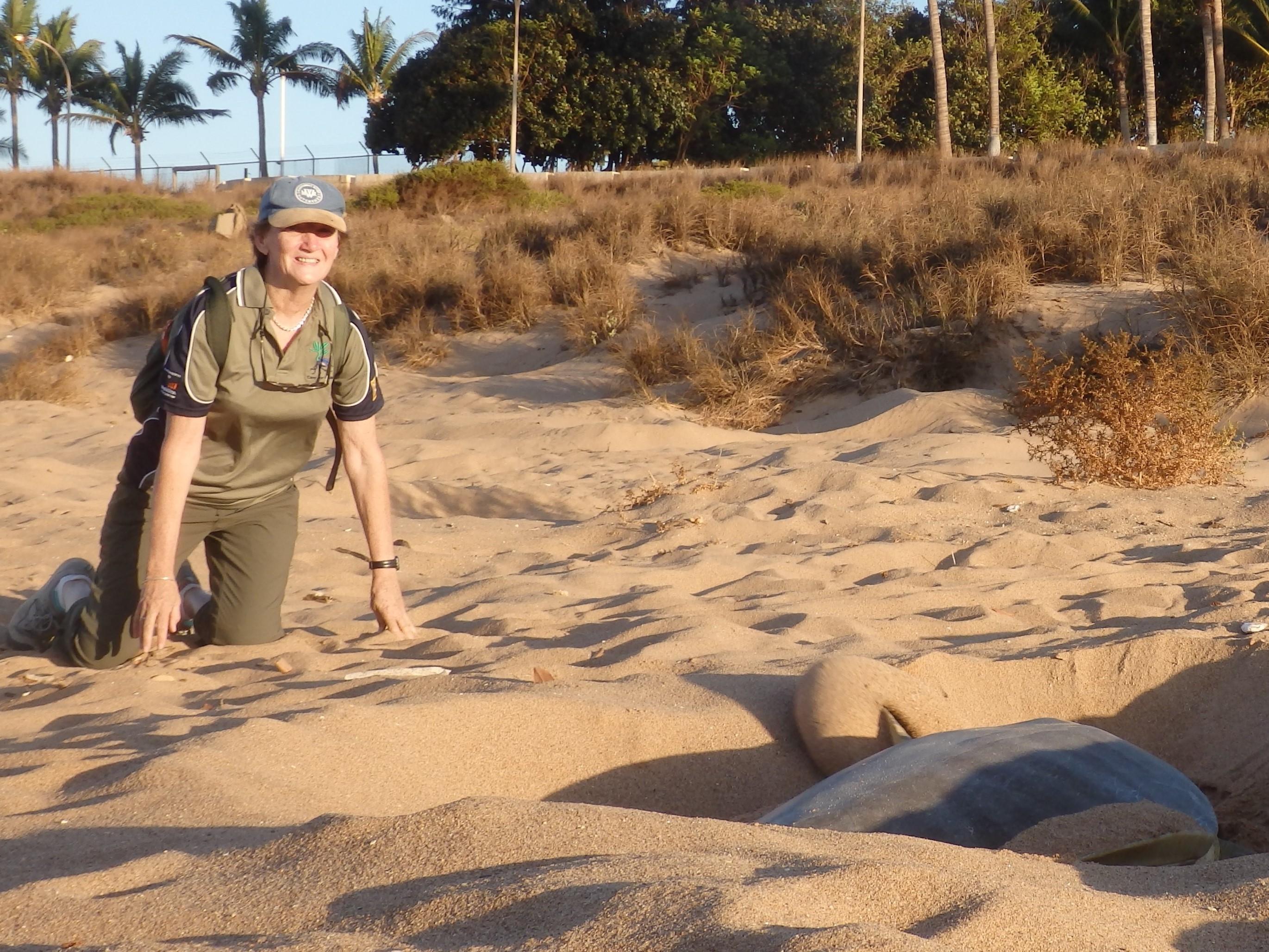 marine_turtle_conservation.JPG