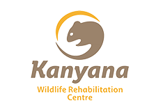 kanyana-logo.png