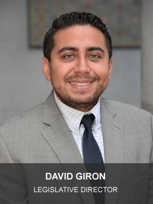 CD13_Photo_-_David_Giron1_(WEB)_(1).jpg