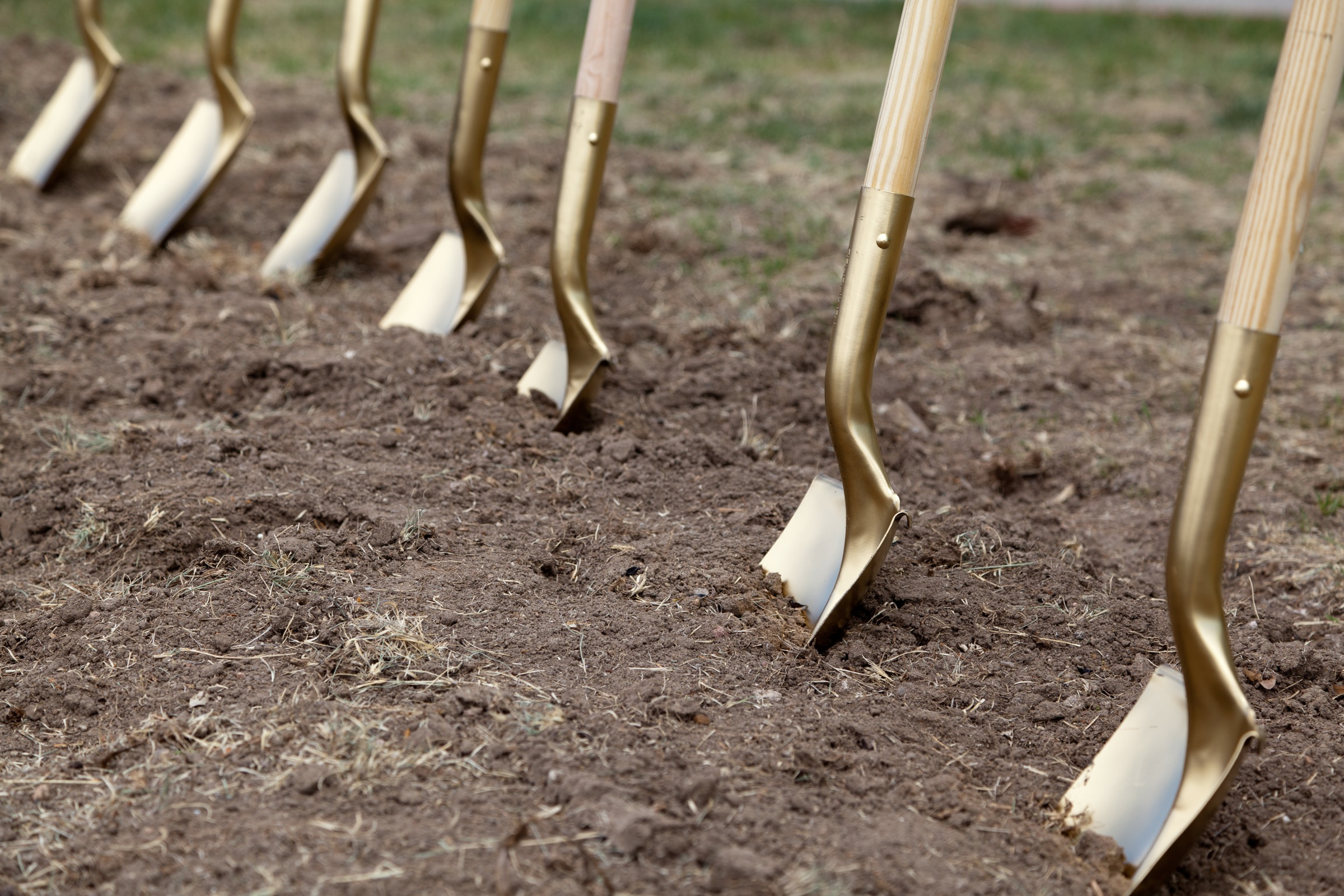 shovels-in-dirt.jpg