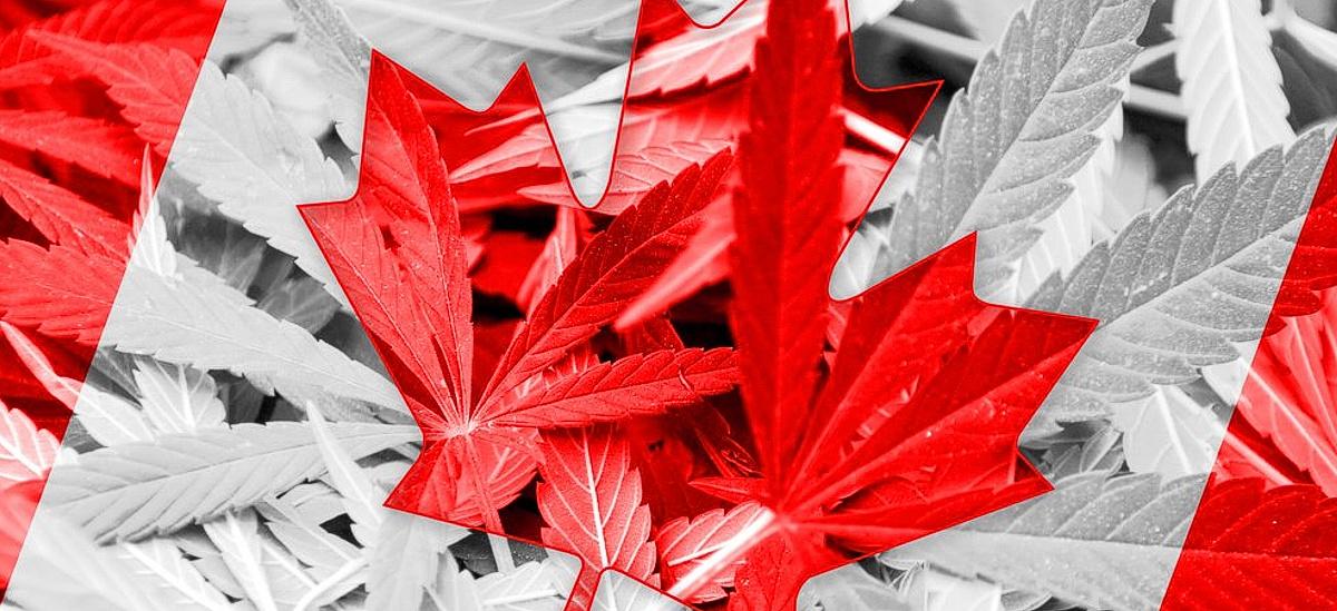 legalization_of_cannabis_Header.JPG