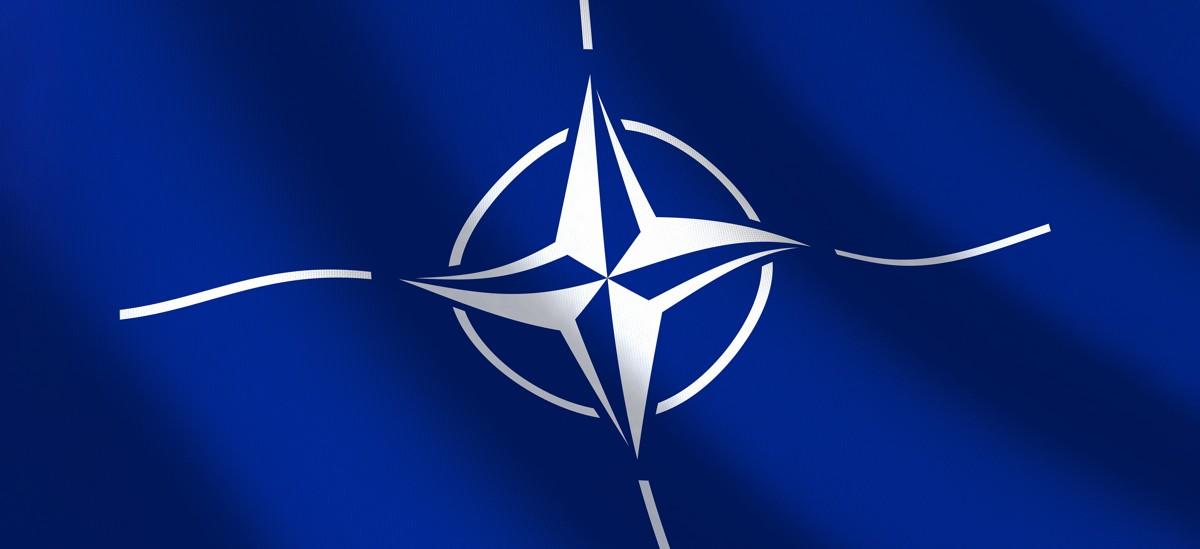 Canadian_Primer_NATO_Header.JPG