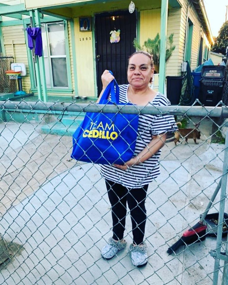 Team Cedillo and Catalina Walton Neighborhood Association Produce 4-14-2020 #2