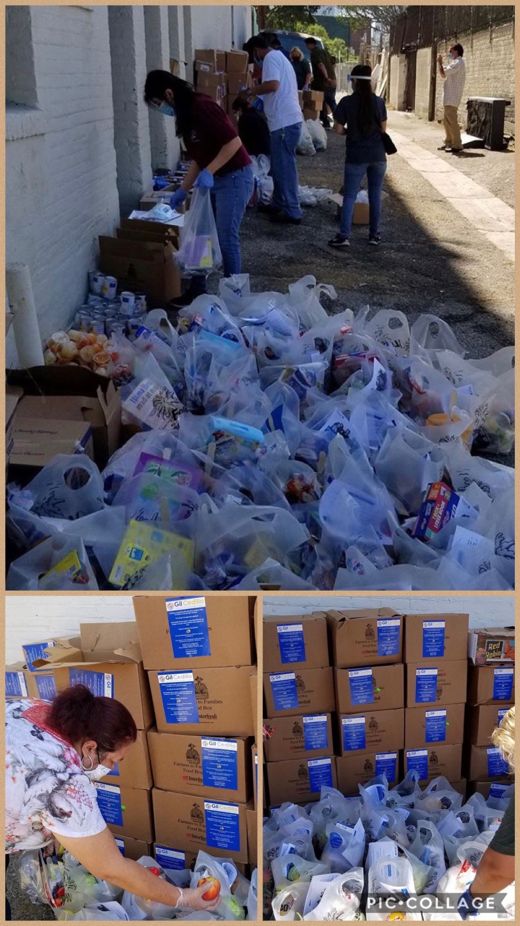 Team Cedillo and Zonas Urbanas distributed groceries to hundreds of families 8-1-2020 COLLAGE