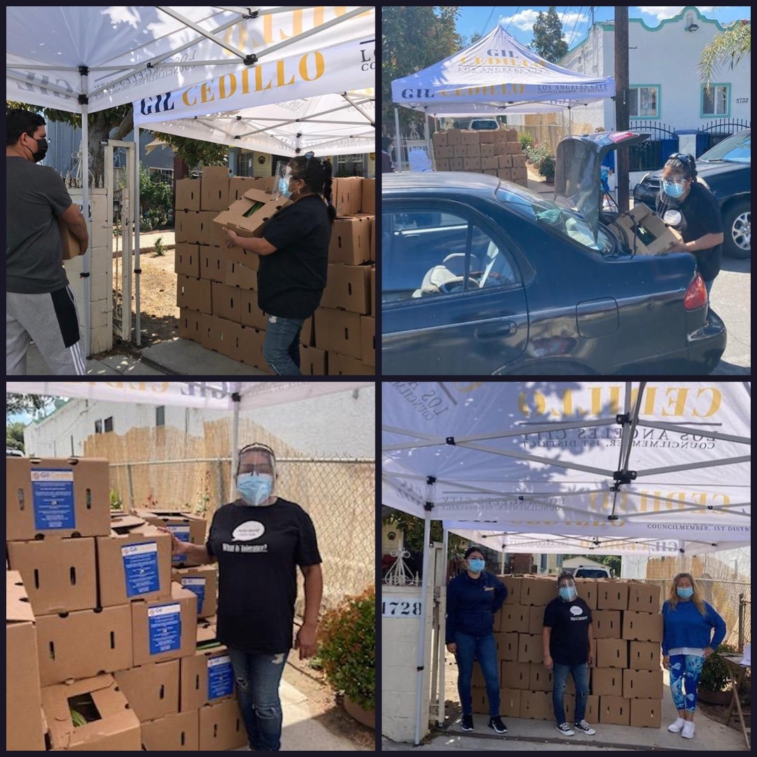 Team Cedillo, CCNP & We Are L.A- led by Brenda Campos distributed boxes of groceries to neighbors in West Adams 3-12-2021 PHOTO COLLAGE