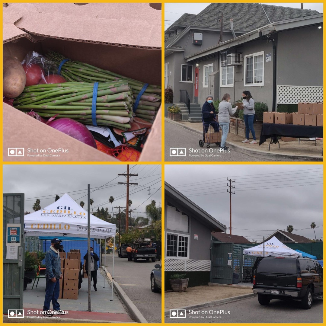Team Cedillo Food Giveaway in Highland Park with Highland Park Improvement Association and Academia Avance 3-20-2021 Photo COLLAGE