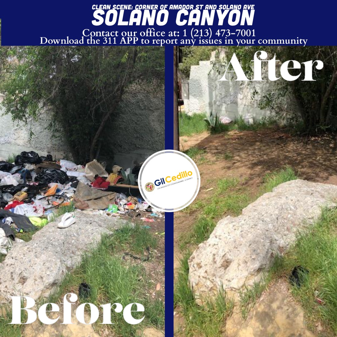 Team Cedillo's Strike Team cleaned the corner of Amador St. and Solano Ave. 3-25-2021